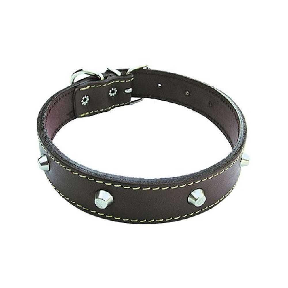 Collare per cane in cuoio foderato, con borchie. Larghezza mm 25, lunghezza cm 55