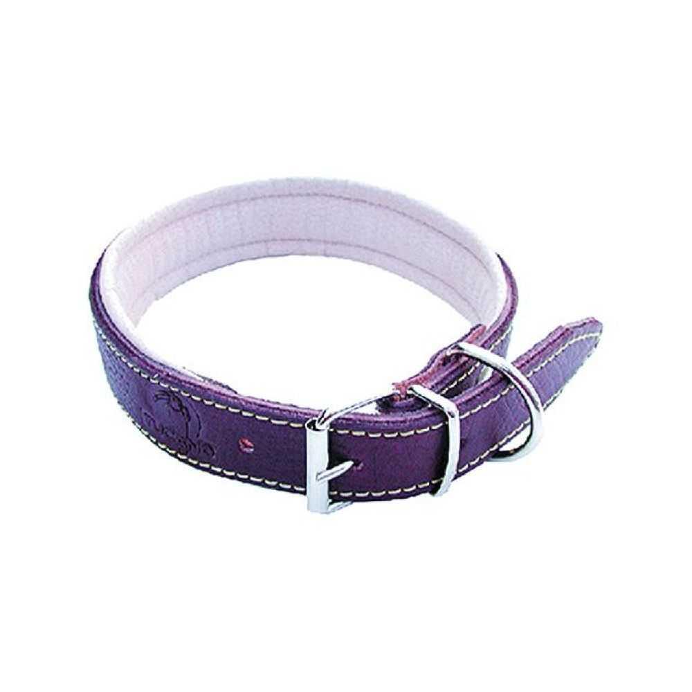 Collare per cane imbottito, larghezza mm 20, lunghezza cm 45